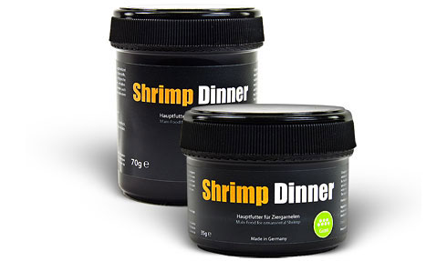 Shrimp Dinner - Shrimp Food